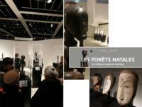 Vie de l'assos : «Les Forêts natales» Musée Quai Branly
