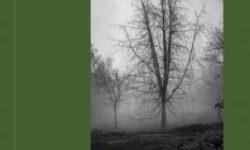 couverture-livre-photographie-vert-le-grand