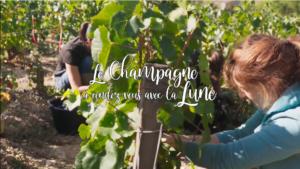 """Conférence HDA : """"Le Champagne a rendez-vous avec la Lune"""", Samedi 17 avril 2021"""